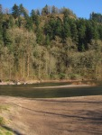 November sun (and wind) on the Sandy River